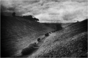 Wolds-3