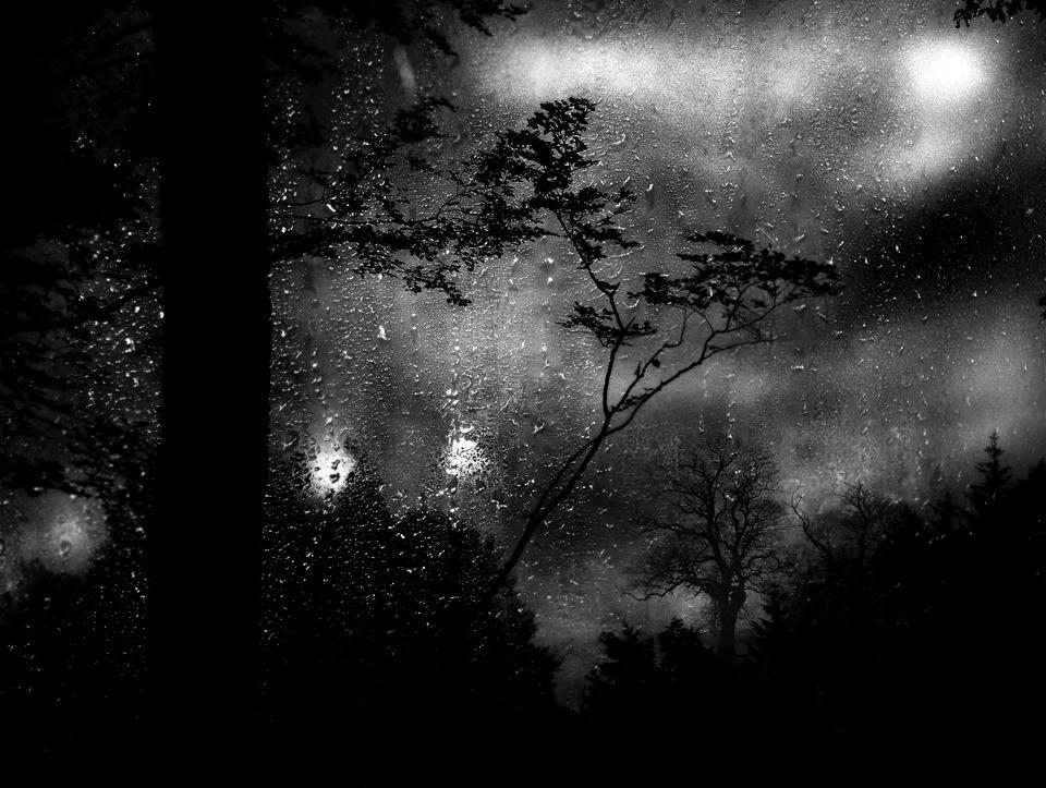 1_Rainscape-No-5