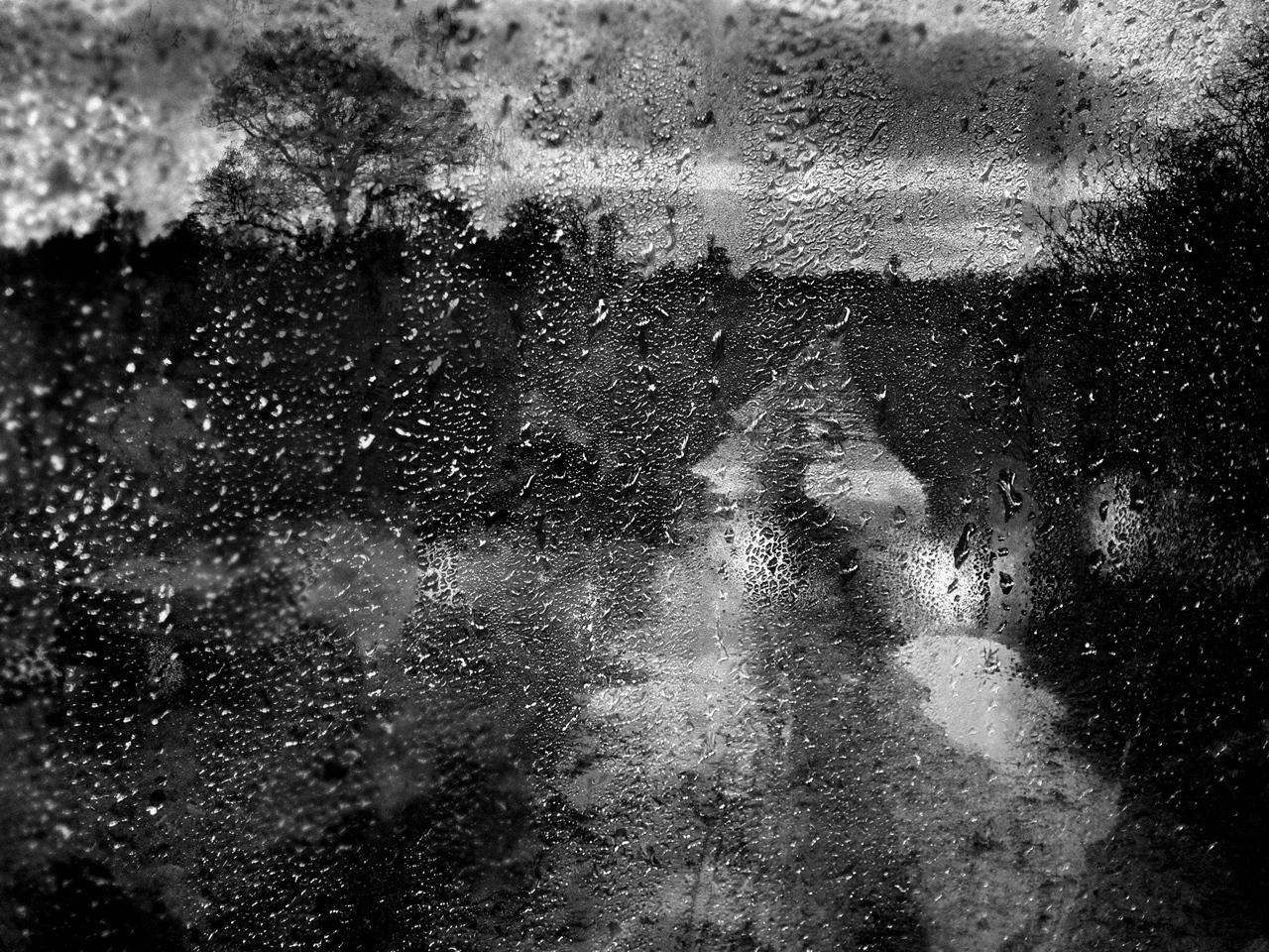 Rainscape-No.-9
