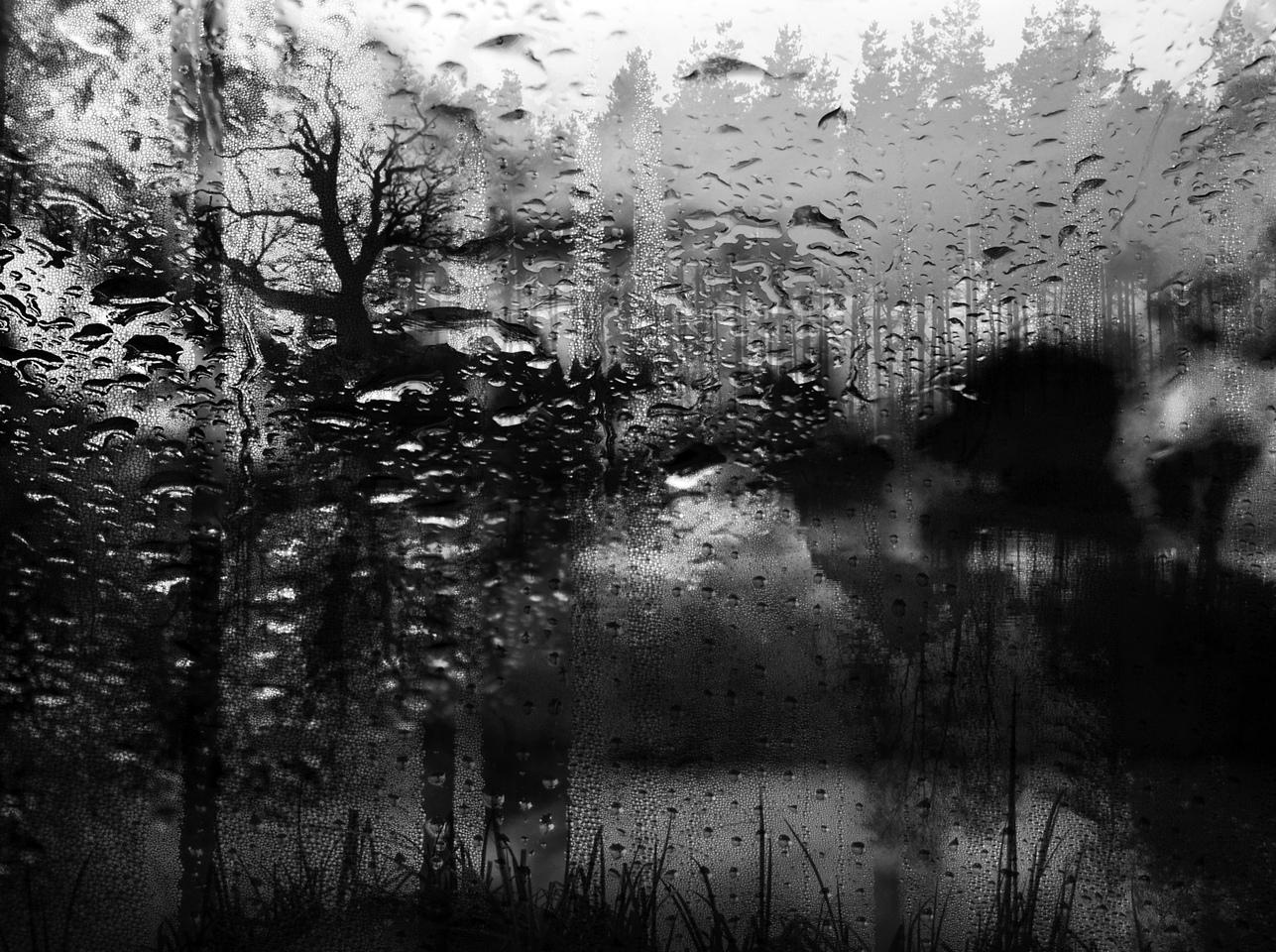 Rainscape-No.6