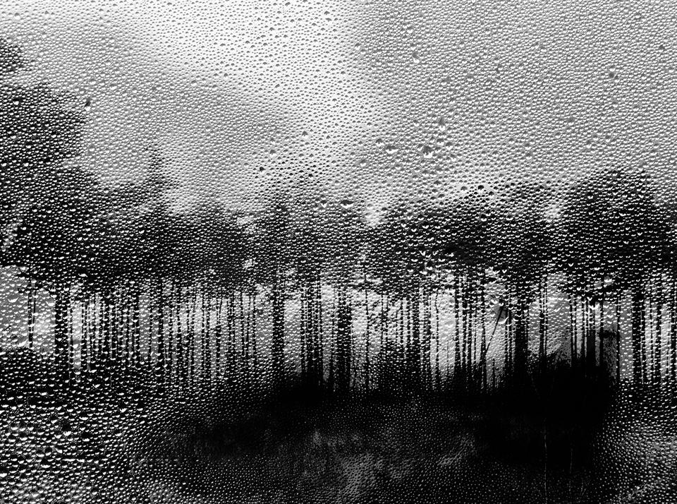 Rainscape-No2