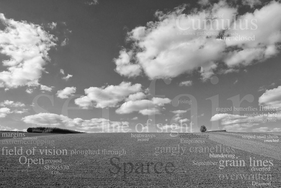 A black and white photographic collage , image taken from Rabbit Dale